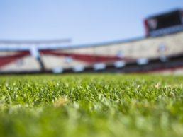 Stadium mistakes